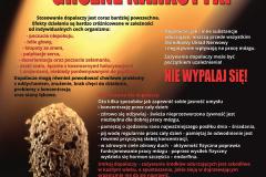 Plakat ŚPWIS Dopalacze Wypalacze groźne narkotyki